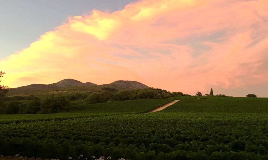 Paarl Valley at Sunset